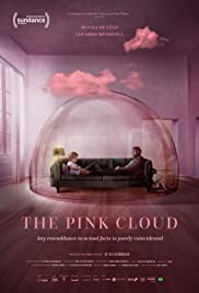 The Pink Cloud song